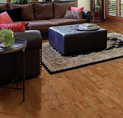 Living room remodeled with cork flooring